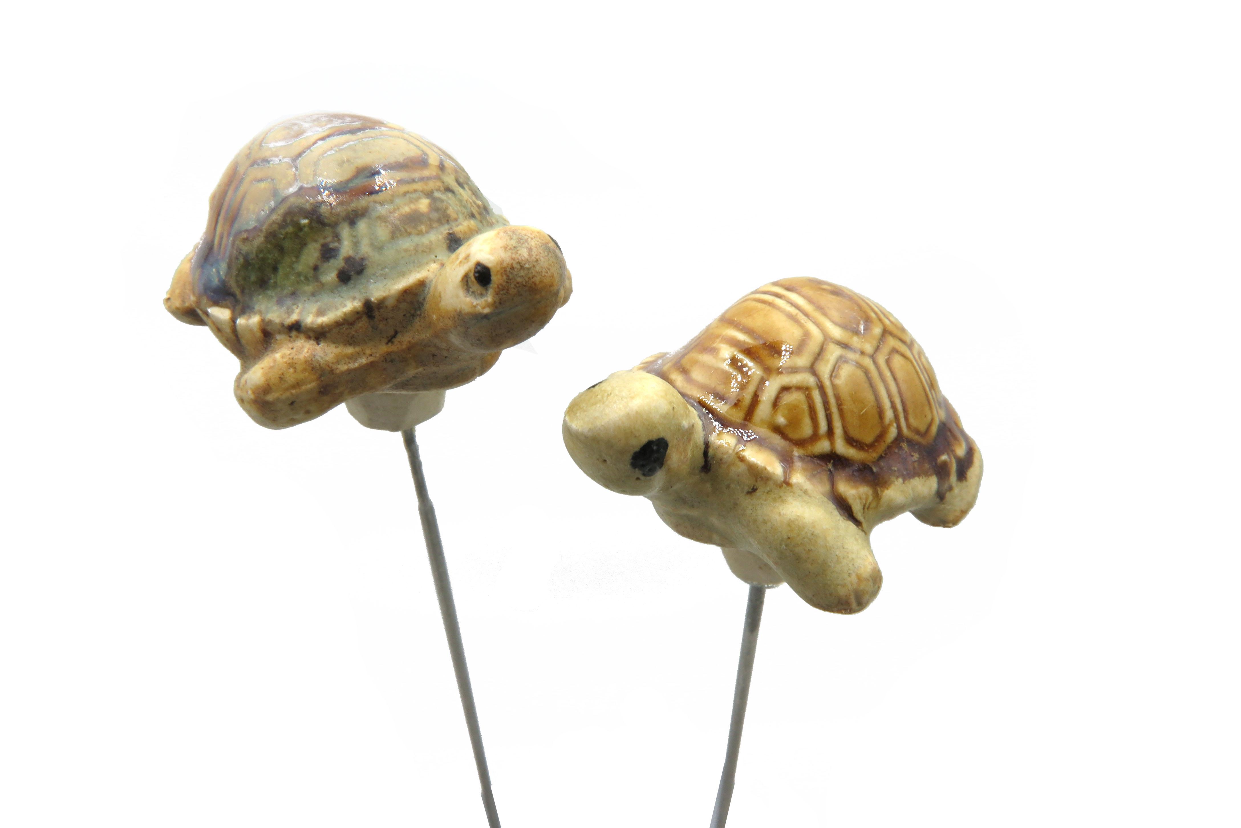 Steck-  Schildkröte Walnuss/ S 5cm