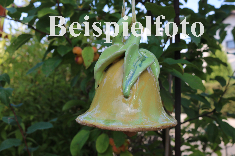 Glockenblume Orange/ 12cm