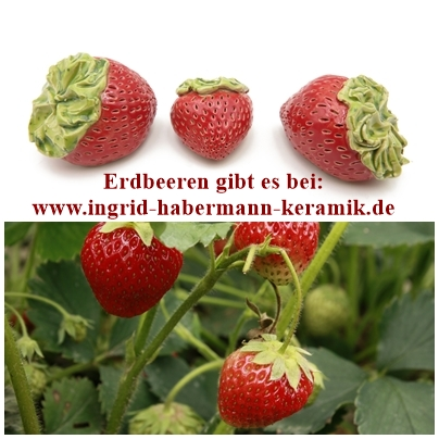 Zuckersüße Erdbeeren / Riesenerdbeere  L 7 cm