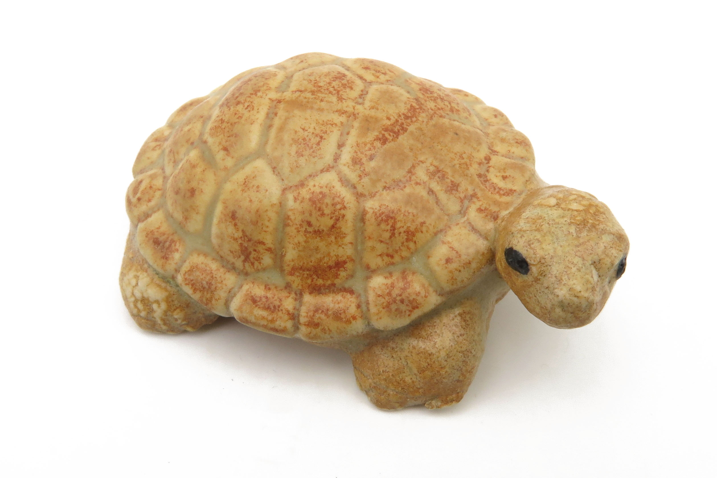 Schildkröte sahara/ M 7cm