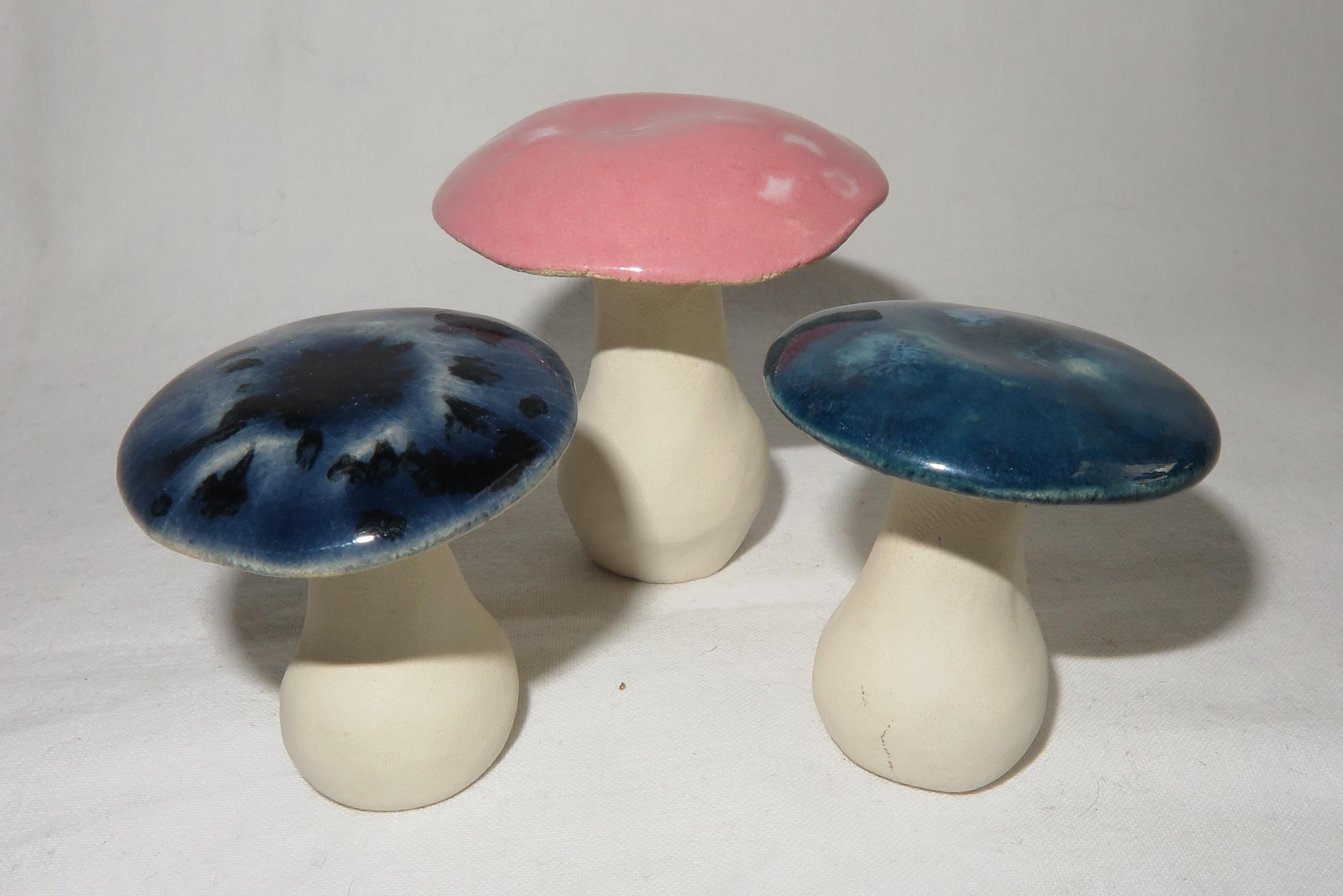 3 Pilze Ein Traum in blau und rosa/ S