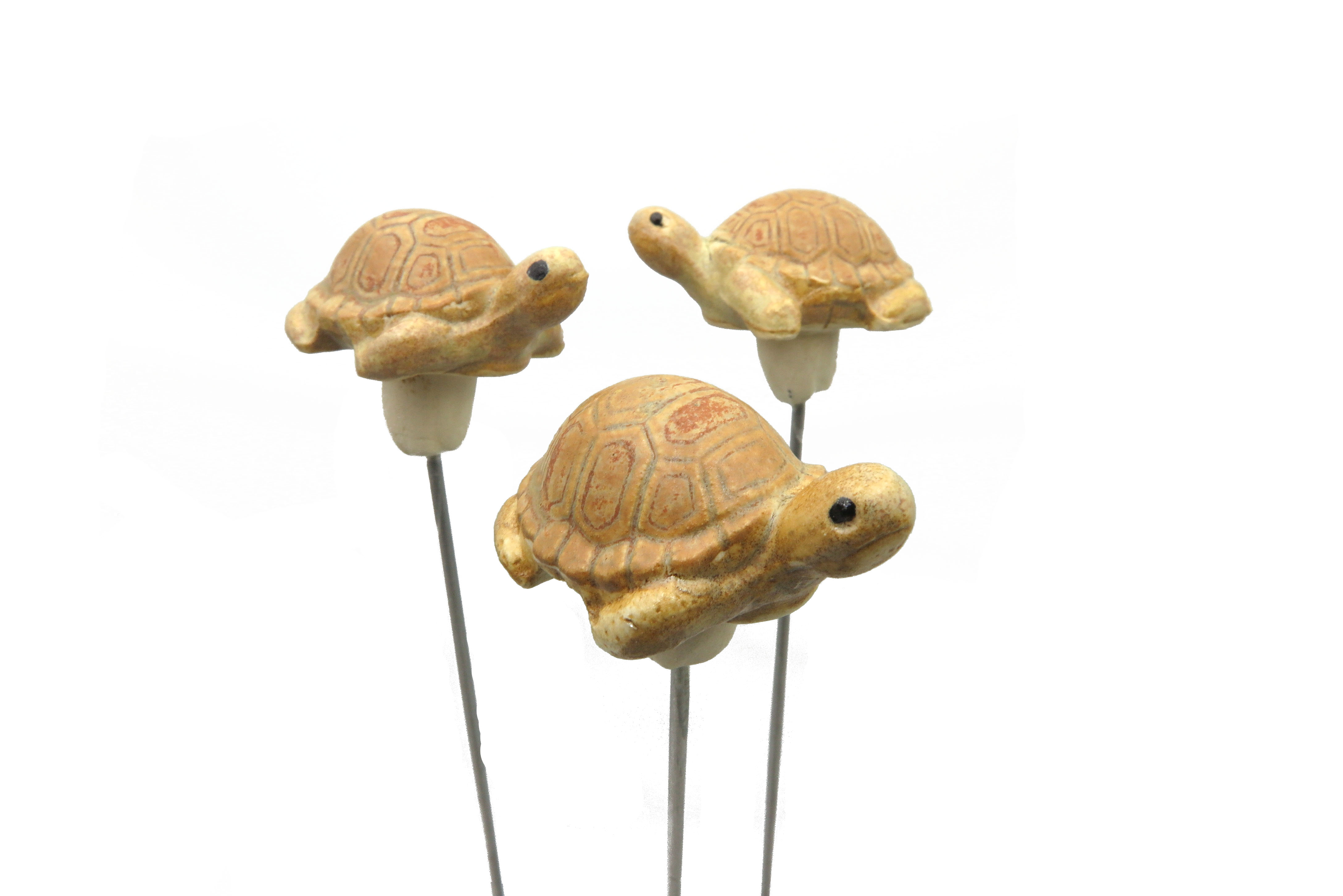 Steck-  Schildkröte sahara/ S 5cm