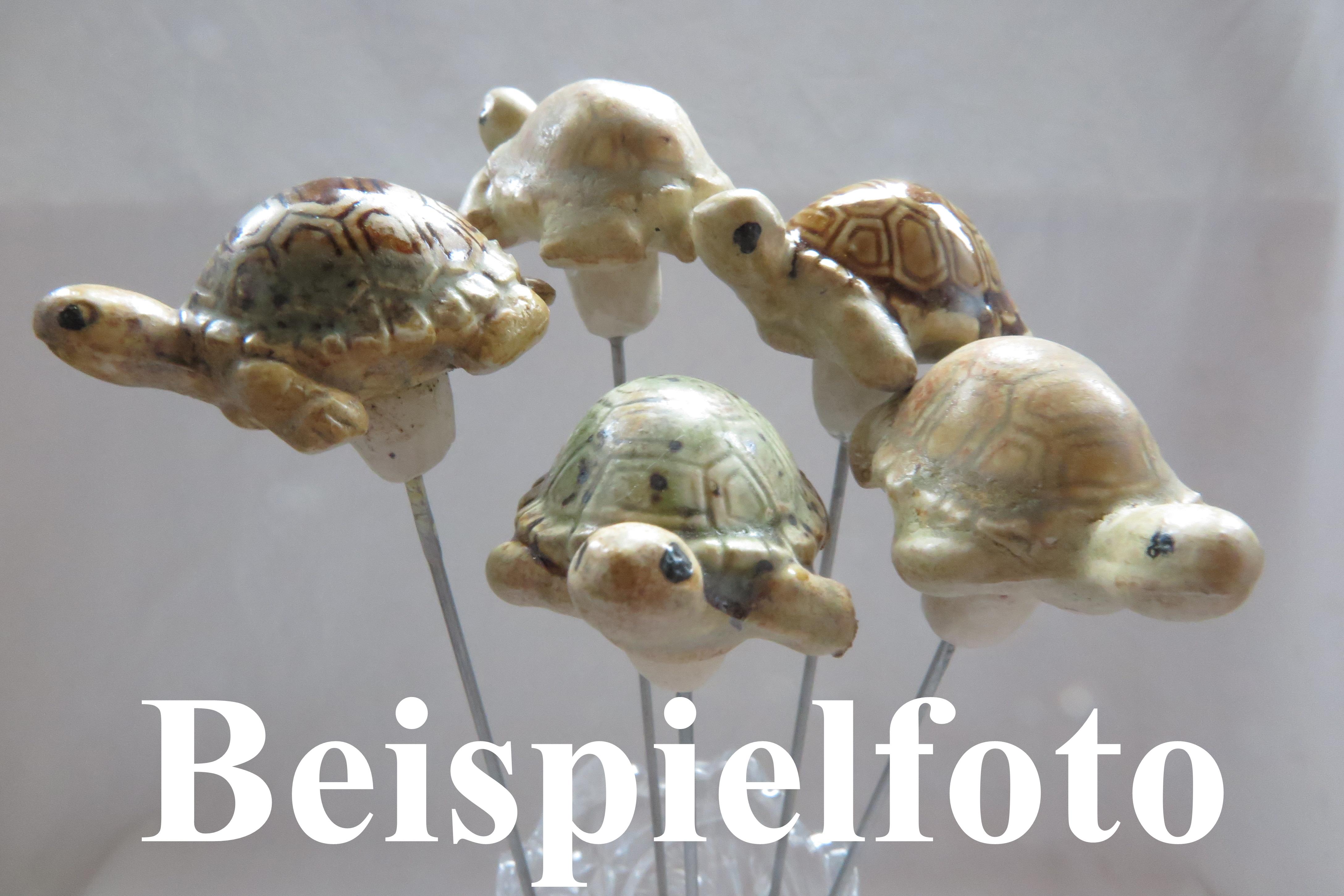 Steck-  Schildkröte creme weiß/ S 5cm